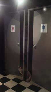 分かれてないトイレ.JPG